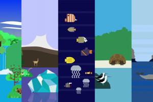 El cambio climático y la biodiversidad en América Latina y el Caribe | CEPAL